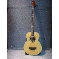 BASS ELECTRIC ACOUSTIC