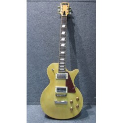 ELECTRIC GUITAR SQUILFUL LP NT