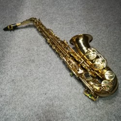 ALTO SAX  SELMER S.ACTION S II SECOND HAND